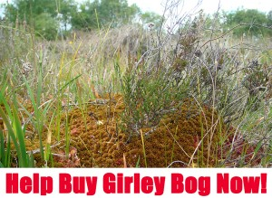 HELP BUY GIRLEY BOG, CO. MEATH