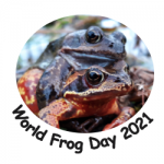 Word Frog Day 2021