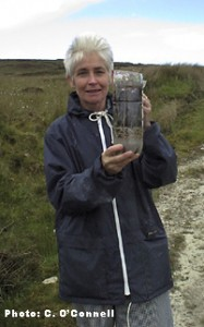 Bog Formation in a Bottle - IPCC Bogs in the Classroom