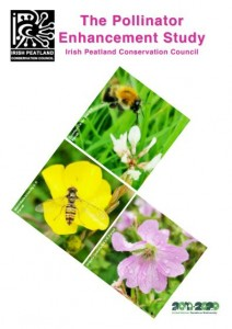 The Pollinator Enhancement Study 2020 Cover Image