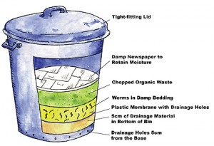 How to Make a Composting Wormery in a Bin