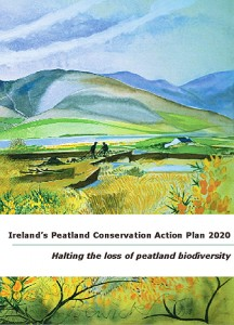 IPCC Conservation Action Plan for Peatlands in Ireland 2020