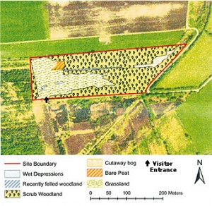 Lullymore West Bog, Co. Kildare Habitat Map 2007