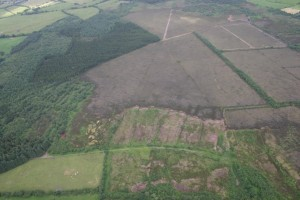 air photo Girley Bog NPWS